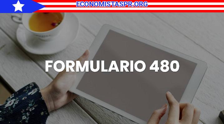 Formulario 480