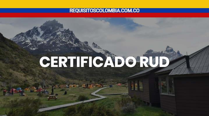 Certificado rud