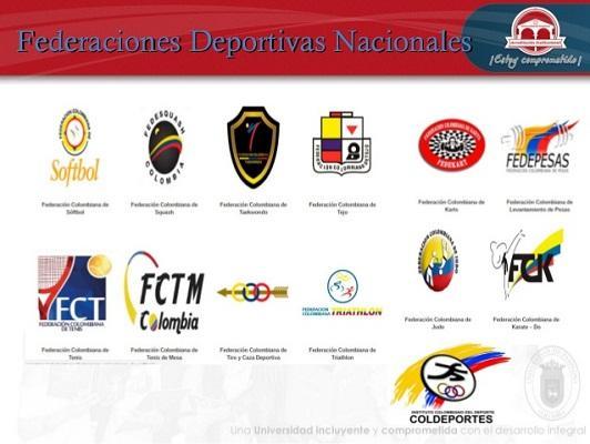 federaciones deportivas nacionales