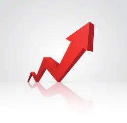 flecha estadistica requisitos para la pension