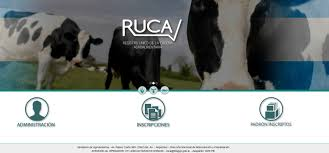 RUCA ARGENTINA
