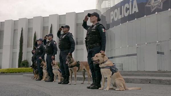que es la policia federal argentina