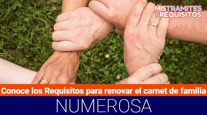 Conoce los Requisitos para renovar el Carnet de Familia Numerosa