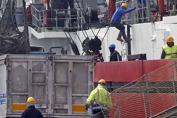 Requisitos para ser Estibador estibadores en puerto