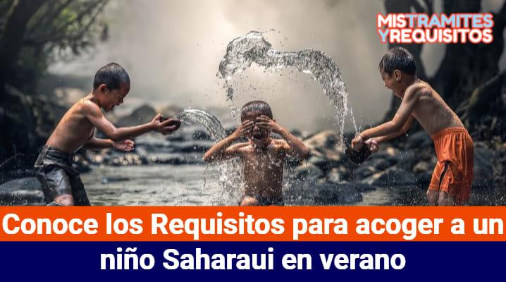Conoce los Requisitos para acoger a un niño Saharaui en verano