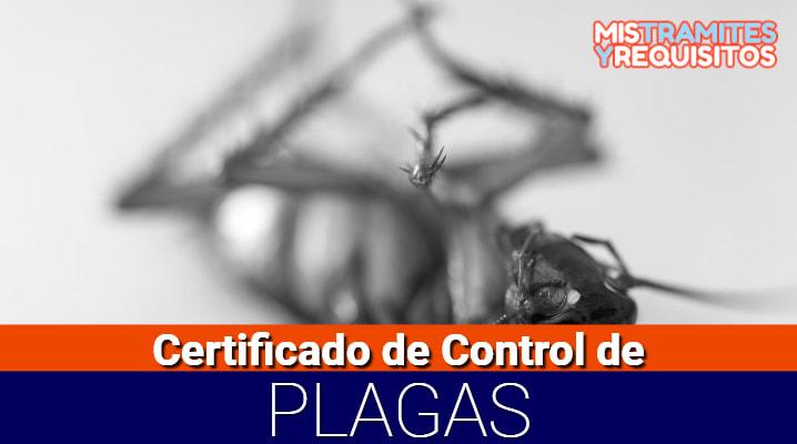 Conoce como solicitar un Certificado de Control de Plagas