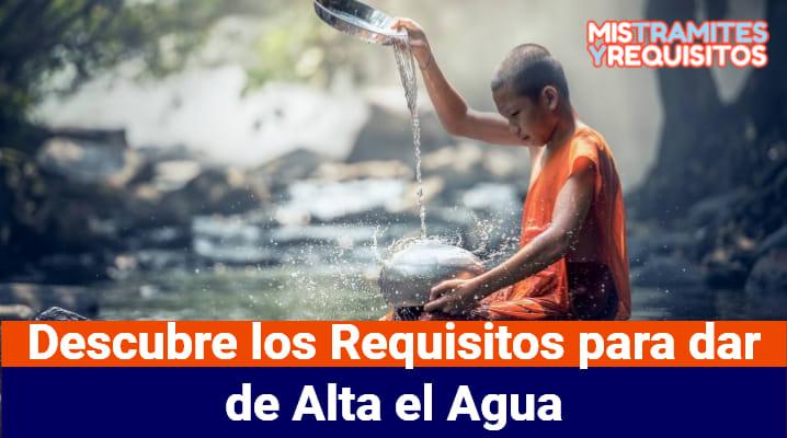Descubre los Requisitos para dar de Alta el Agua