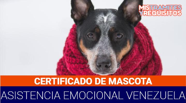 Certificado Mascota Asistencia Emocional Venezuela