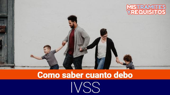 ¿Cómo saber cuanto debo al IVSS? – Seguro Social
