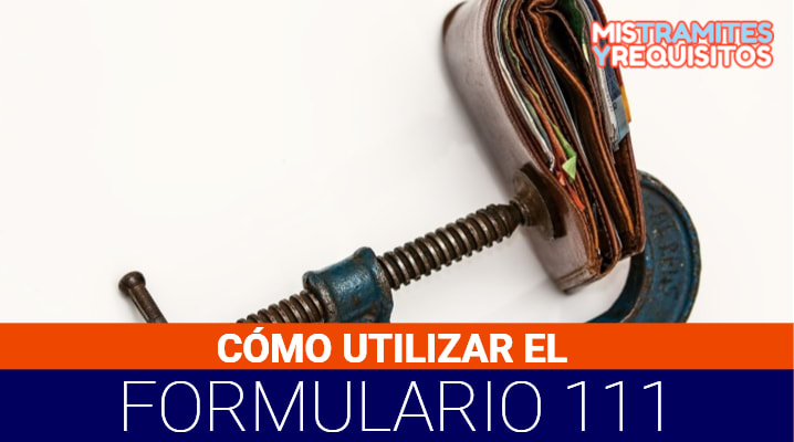 Formulario 111