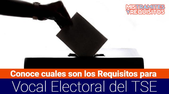 Requisitos para Vocal Electoral