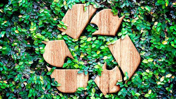 licencia ambiental bolivia