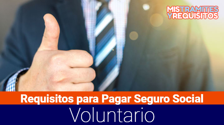 Conoce los Requisitos para Pagar Seguro Social Voluntario de Trabajadores Independientes