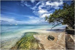 como viajar a Trinidad y Tobago