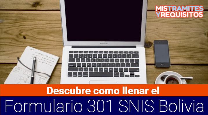 Descubre como llenar el Formulario 301 SNIS Bolivia