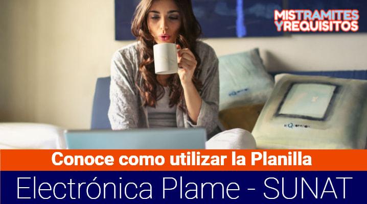 Conoce como utilizar la Planilla Electrónica Plame – SUNAT