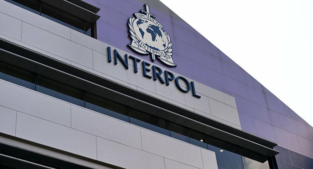 Interpol descubre a más de 30 presuntos terroristas durante un ...
