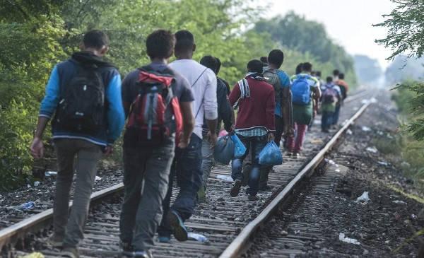 Como saber si Mi PTP está listo inmigrantes