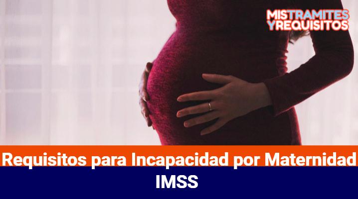 Requisitos para Incapacidad por Maternidad IMSS