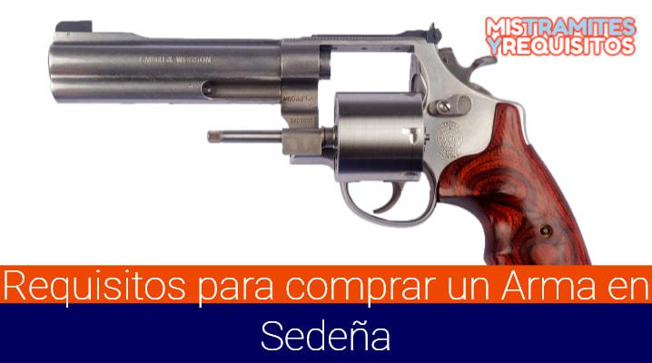 Conoce Cuales son los Requisitos para comprar un Arma en Sedeña