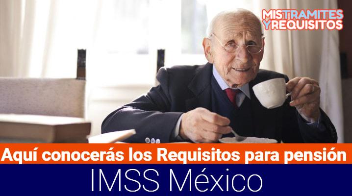 Aquí conocerás los Requisitos para pensión IMSS México