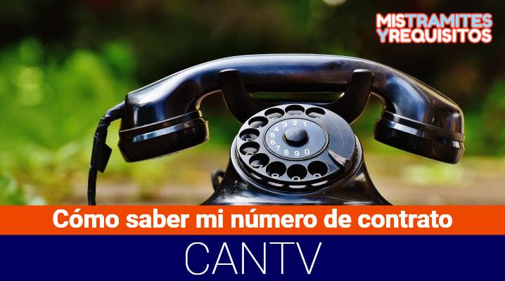 ¿Cómo saber mi número de contrato CANTV? – Consulta Online
