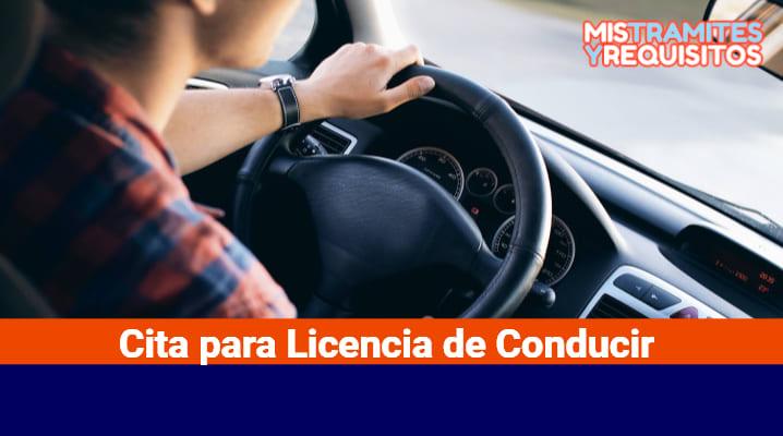 Cita para Licencia de Conducir