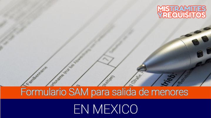 Formulario SAM