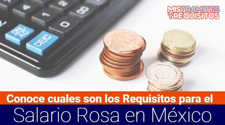 Requisitos para el Salario Rosa
