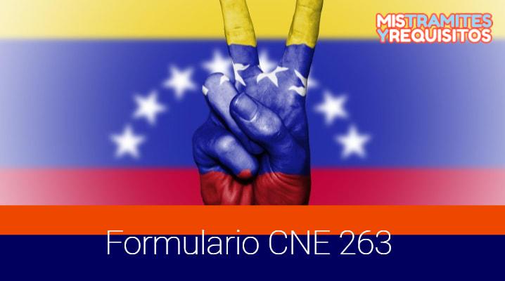 Formulario CNE 263 para la Solicitud Global de Crédito al Consumo