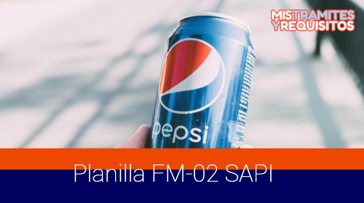 Planilla FM-02 SAPI