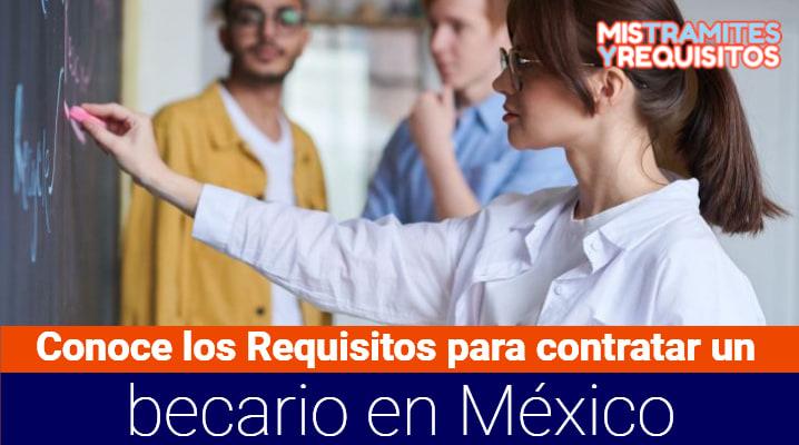 Conoce los Requisitos para contratar un becario en México