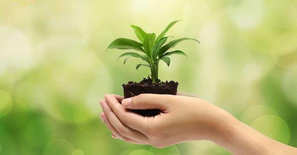 registro para autorizacion ambiental de proyecto obra o actividad