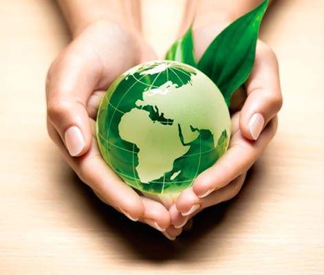 proyecto de obra ambiental