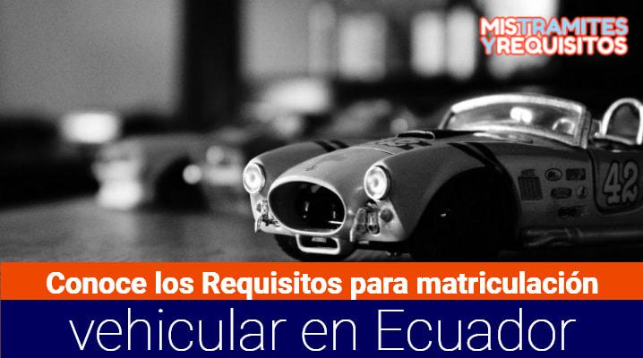 Conoce los Requisitos para matriculación vehicular en Ecuador