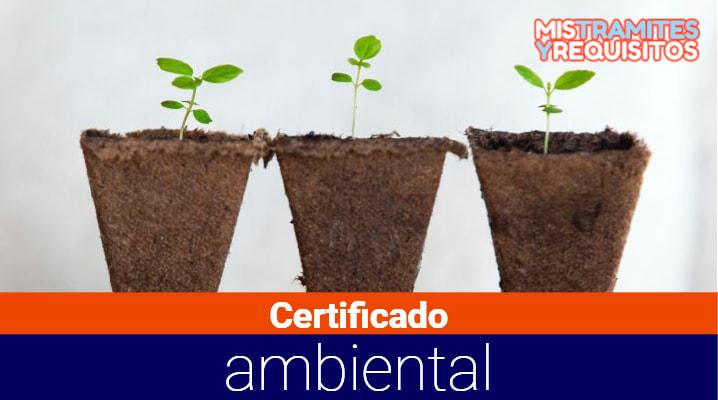 Conoce como obtener el Certificado ambiental para obras en Ecuador