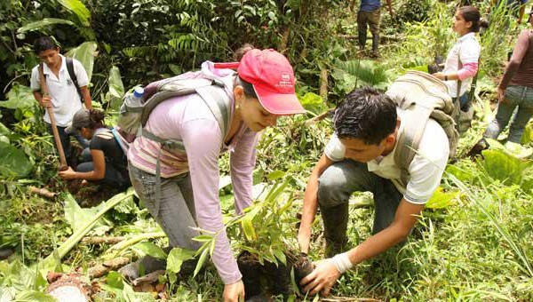 Certificado de no afectación Ministerio del Ambiente sembrando