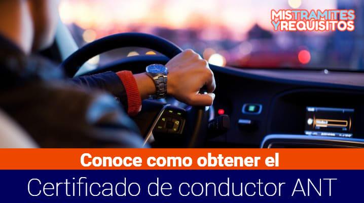 Certificado de conductor