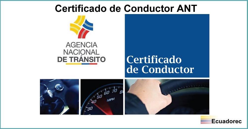 ▷ Certificado de Conductor ANT | ¿Cómo obtener en línea?