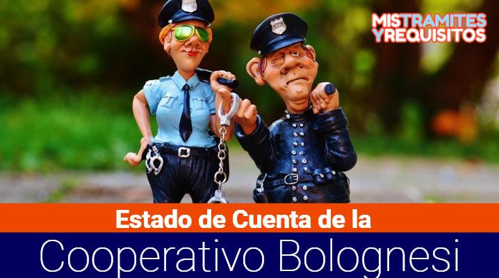Estado de Cuenta Cooperativa Bolognesi: Cómo consultarlo, qué es la Cooperativa Bolognesi y cómo ingresar