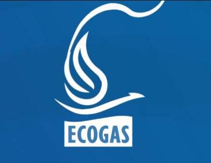 Estado de Cuenta Ecogas logo