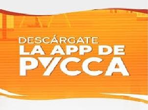 Estado de Cuenta PYCCA